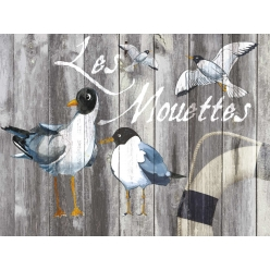 Set de Table collection oiseau les mouettes