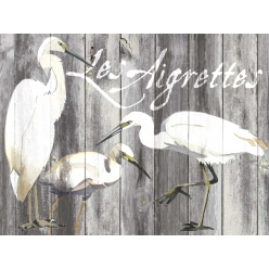 Set de Table collection oiseau les aigrettes